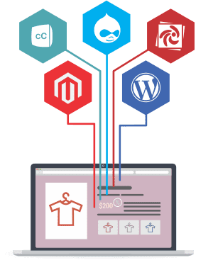 Wordpress Development Services in New York, India & Australia